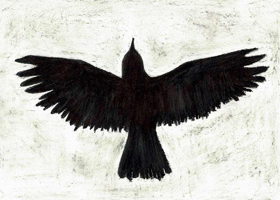 new_Crow